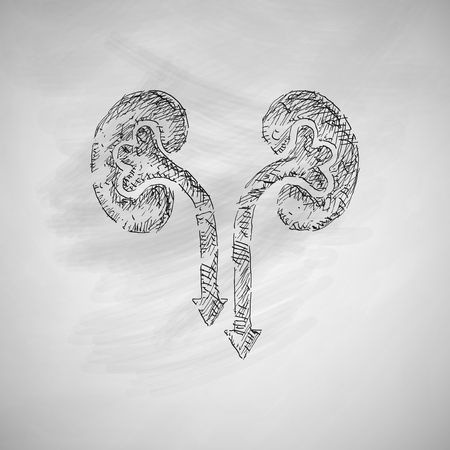 Icono de los riñones