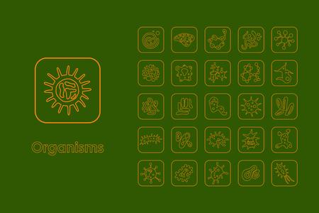 organisms: It is a set of organisms simple web icons