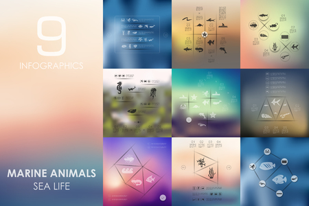 marine animals vector infographics with unfocused blurred background