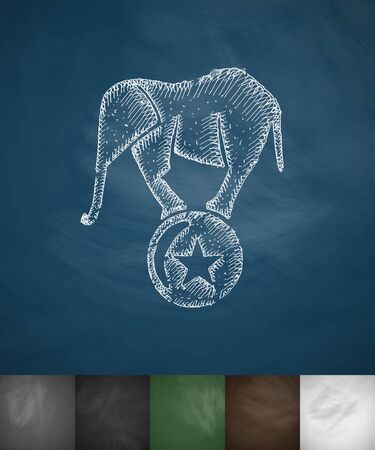 marquees: elephant on the ball icon. Hand drawn vector illustration. Chalkboard Design Stock Photo