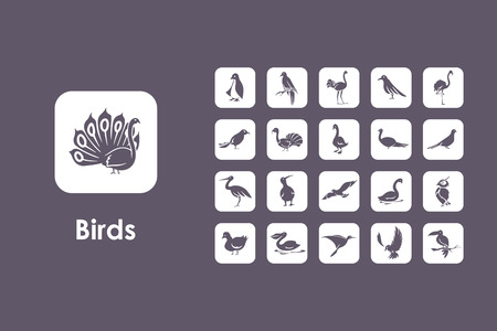 It is a set of birds simple web icons