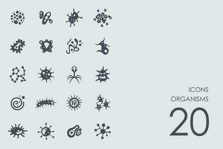 organisms: organisms vector set of modern simple icons