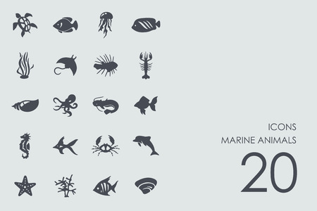 fish exhibition: marine animals vector set of modern simple icons
