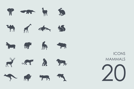 mammals: mammals vector set of modern simple icons