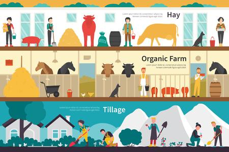 labranza: Hay Organic Farm labranza escuela plana interior al aire libre concepto de web. Gráfico de la carrera de la diversión Vectores