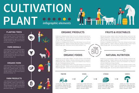 labranza: El cultivo de plantas infografía ilustración vectorial plana. Presentación Concepto editable