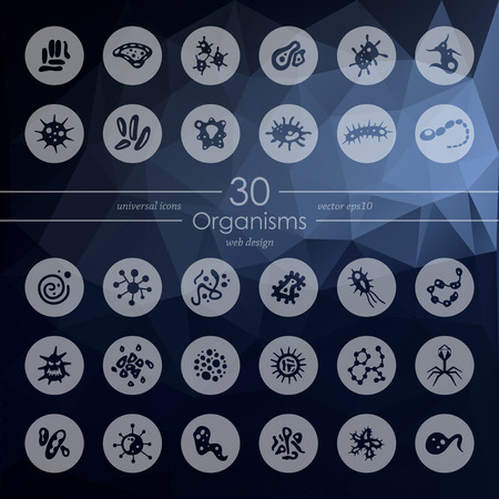 organisms: organisms modern icons for mobile interface on blurred background