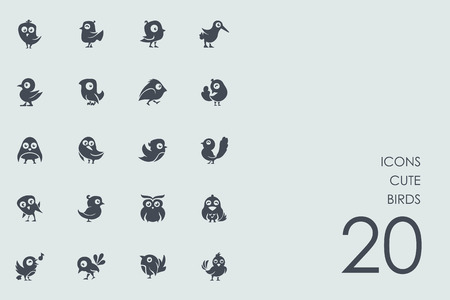 ornithologist: cute birds vector set of modern simple icons
