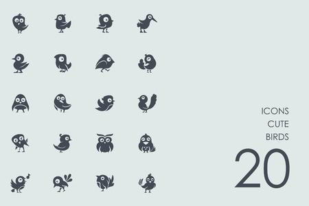 cute birds vector set of modern simple icons