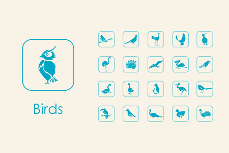 ornithologist: Set of birds simple icons