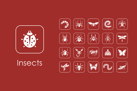 chitin: Set of insects simple icons