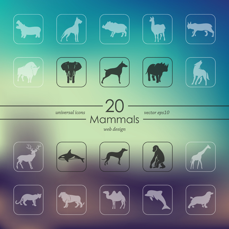 Set van zoogdieren iconen vector illustratie.
