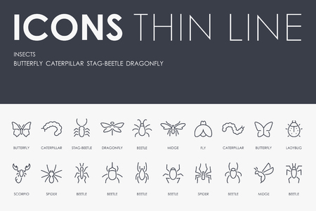Insects Thin Line Icons 向量圖像
