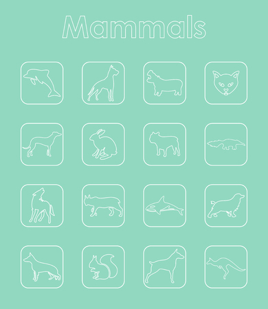 Set of mammals simple icons on thin line style illustrated on blue background