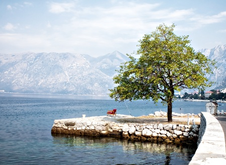 Indian summer in Dobrota,Bay of Kotor,autumn 2011