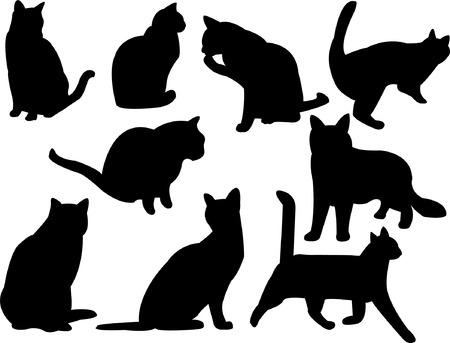 colección de silueta de gatos  Vectores