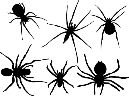 spider cartoon: spider silhouette collection   Illustration