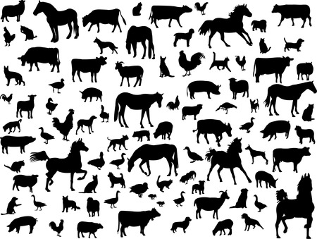 big collection of farm animals Vector