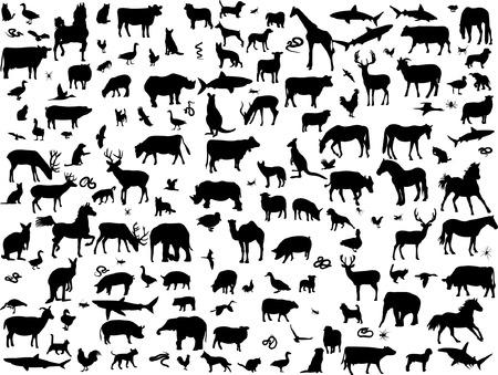 silhouettes elephants: gran colecci�n de diferentes animales silueta