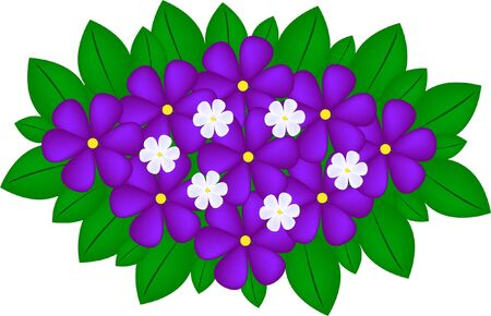 violet bouquet  Illustration