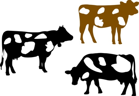 dairy cattle: Cow silhouette collection - vector Illustration
