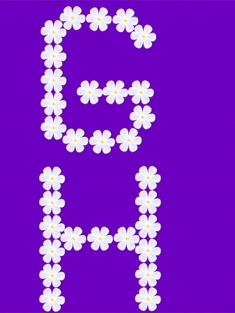 flowers letter g,h - vector Illustration