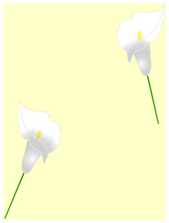 background with white flowers - vector