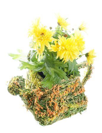 sapless: Vaso di fiori con fiori Archivio Fotografico
