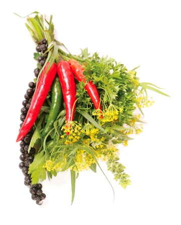 Bouquet of fresh spice photo