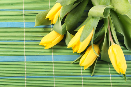 Fresh yellow tulips on green  bamboo placemats photo