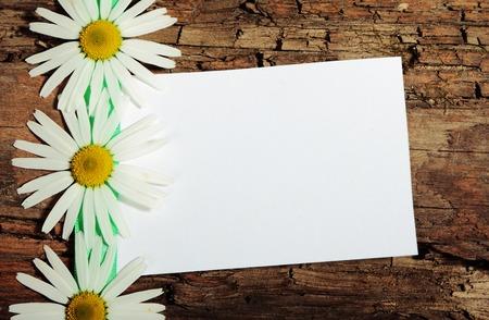 post card: Greeting post card