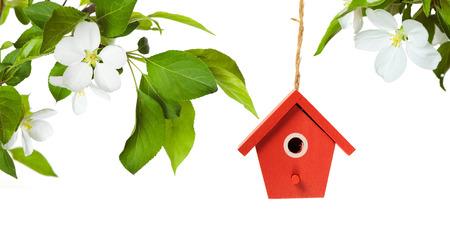 bird house: One painted birdhouse with apple blossom on white background Stock Photo