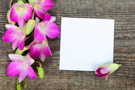 Pink orchid flowers on old wooden background photo