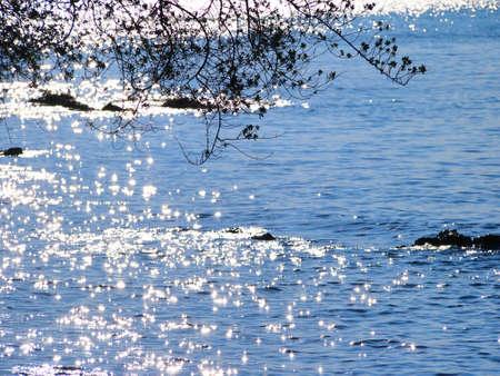 Blink sea
