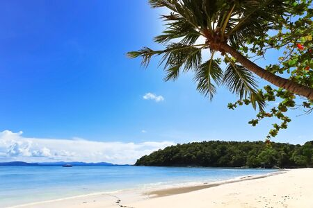 Tropical beach with coconut palm with blue ocean and blue sky Stock Photo - 10693388