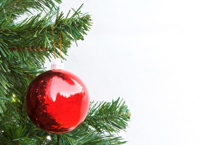 Red Christmas ball and green spruce branch on white background photo