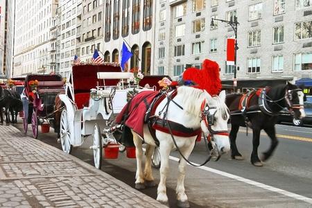 central: Coche de caballos en Central Park, Nueva York, EE.UU.