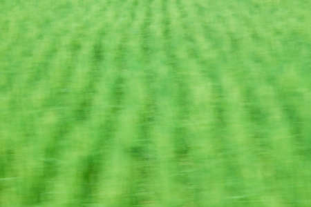 Green wave abstract background 版權商用圖片