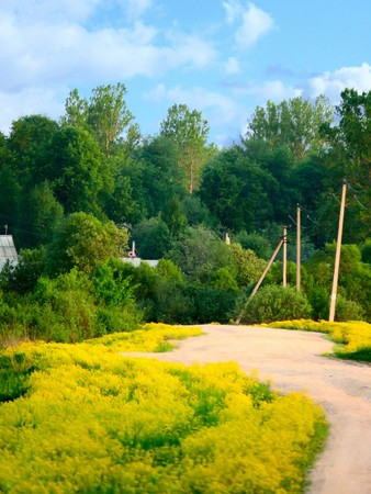Rural road. Spring flowers. Stock Photo - 7795282