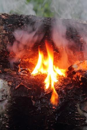 Smoke. Campfire.  Stock Photo