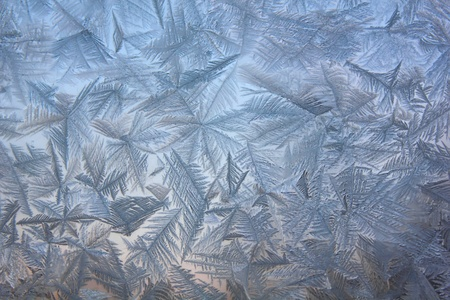 Frosty patterns.  photo