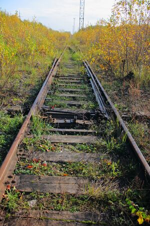The old railway. Grass. photo