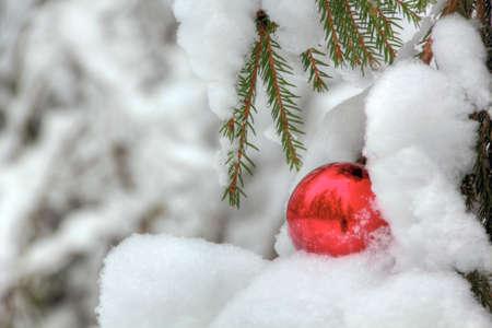 Christmas tree toy  Snow  Christmas   Stock Photo - 12729130