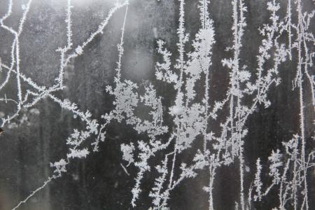 Window frost  Rural  photo