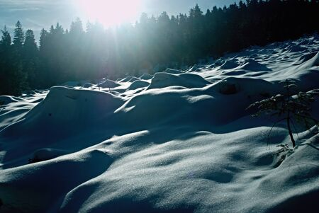 snowy field: Snowy field with strong sun and shadows
