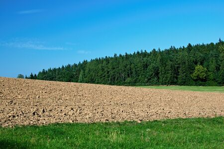 Landscape with meadow, plowed field, forest and blue sky