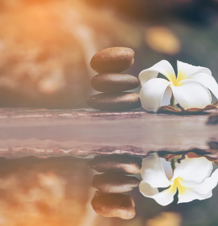 Stone with frangipani plumeria flower in water reflection Stock Photo