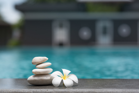 Flower and zen stone in a serenity pool