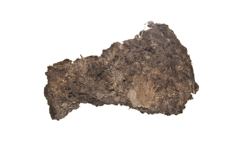 cow dung isolated on white background 版權商用圖片