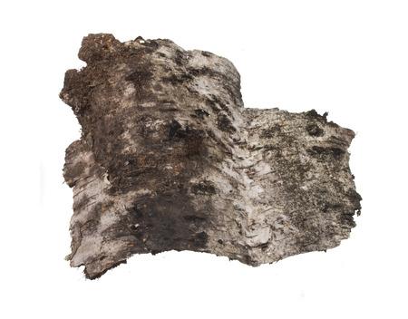 bark isolated on white background Фото со стока